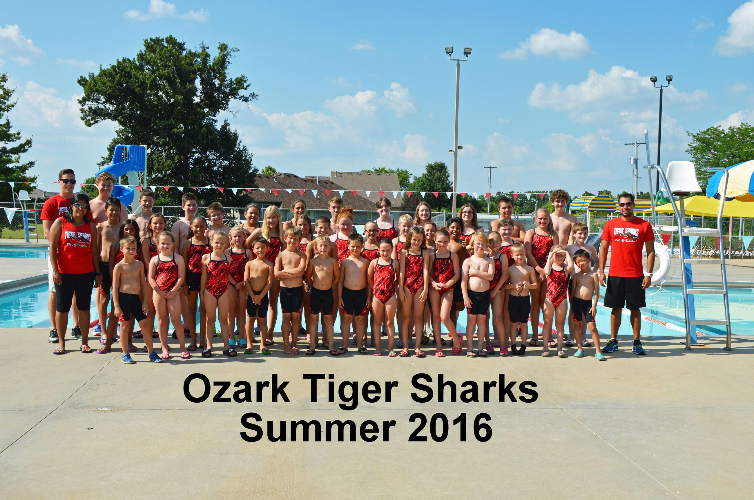 Team Picture Ozark Tiger Sharks Swim Team Photo